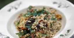 Perlebyg tilberedt som risotto med svampe og persille