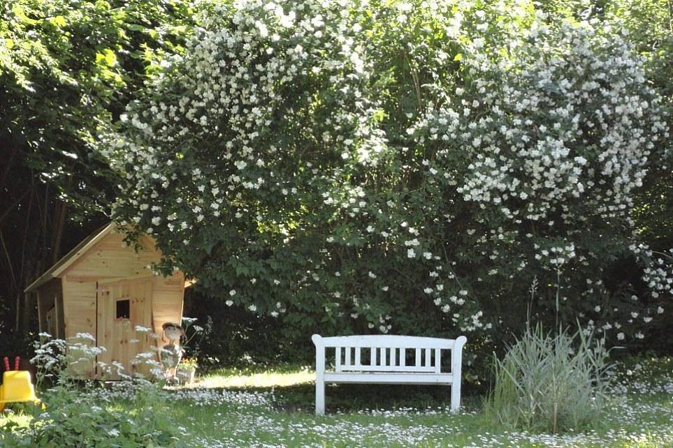 haven om sommeren
